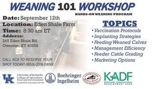 Weaning 101 Workshop