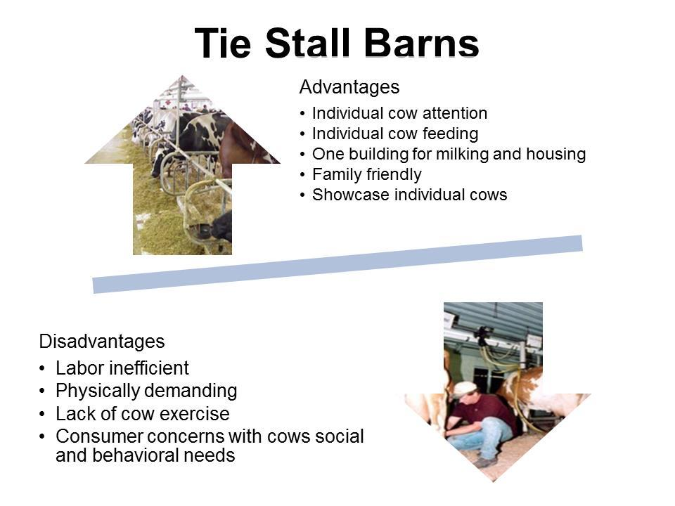 Tie Stall Barns