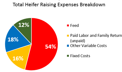 Total Heifer Raising Expenses Breakdown