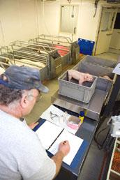 Farrowing Building
