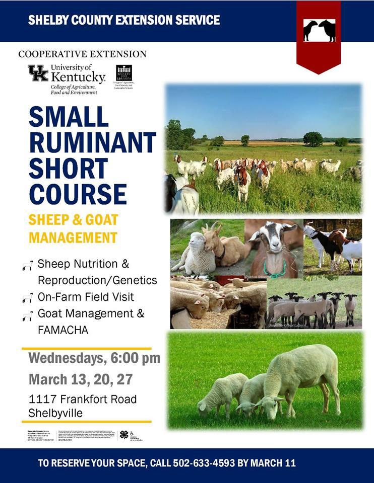 Small Ruminant Short Course