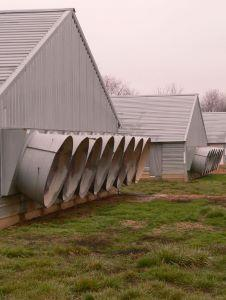 Poultry houses at a commercial broiler farm