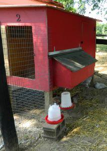 Urban poultry house