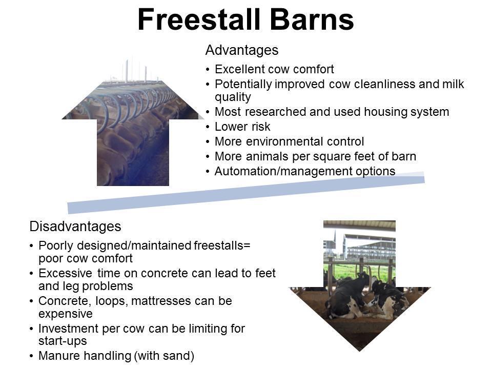Freestyle Barns