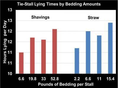 Lying times