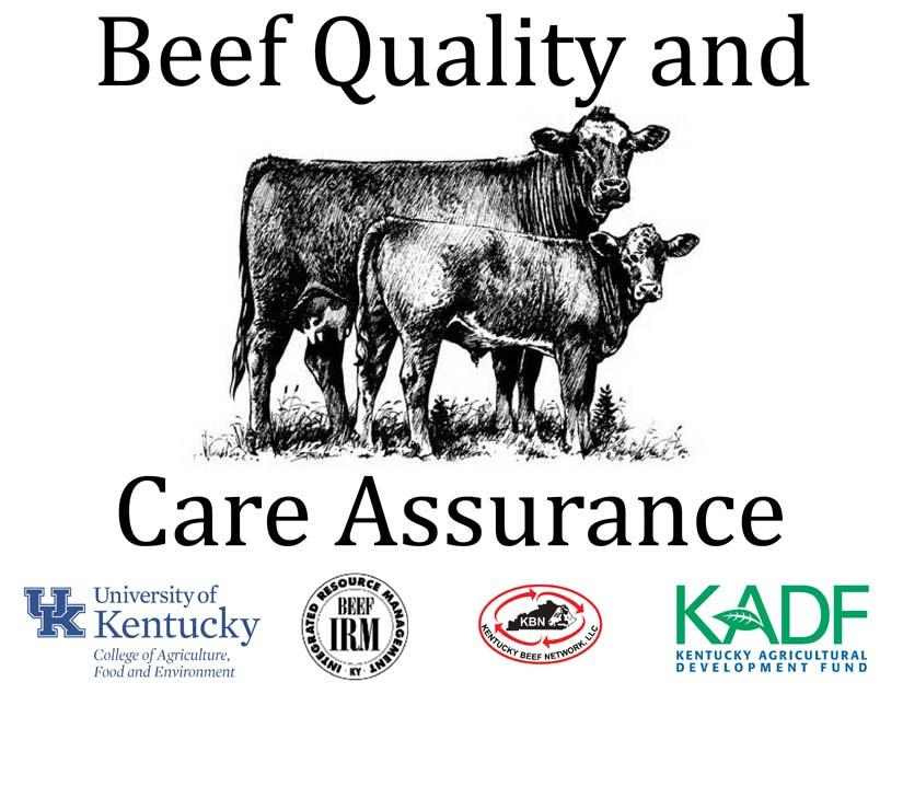 Beef Quality and Care Assurance