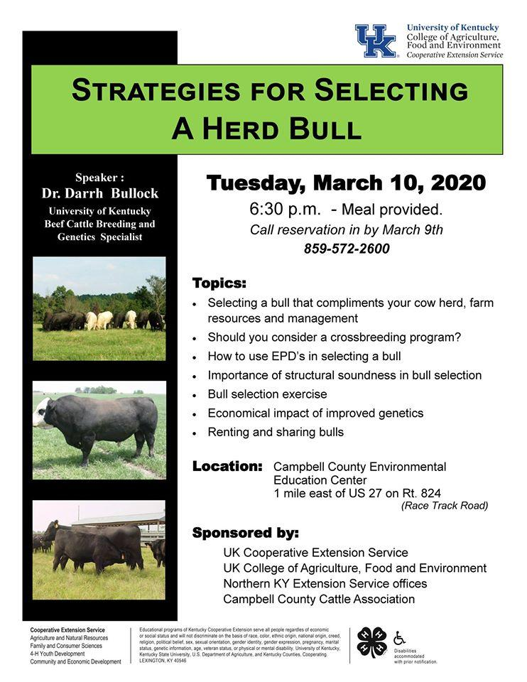 Strategies for Selecting a Herd Bull